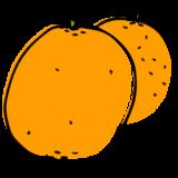 REPeat explore an ingredient oranges